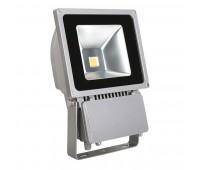 Прожектор диодный LED MCOB MONDO LED MCOB-100-GR (19205)