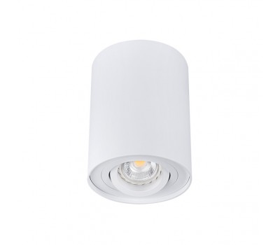 Светильник типа DownLight BORD DLP-50-W (22551)