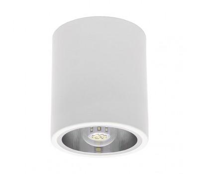 Светильник типа DownLight NIKOR DLP-60-W (7210)