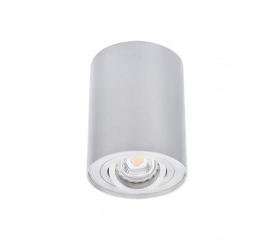 Светильник типа DownLight BORD DLP-50-AL (22550)