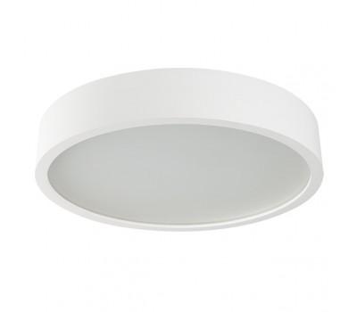 Светильник накладной декоративный JASMIN 470-W/M (23128)