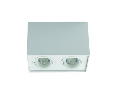 Светильник типа DownLight GORD DLP 250-W (25473)