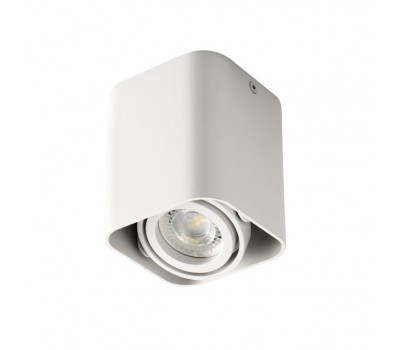 Светильник типа DownLight TOLEO DTL50-W (26114)