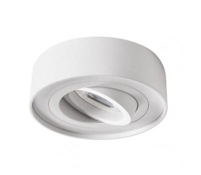 Светильник точечный MINI BORD DLP-50-W (28782)